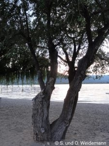 Strand am Lake Osoyoos