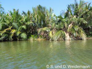 Fahrt auf dem Thu Bon River