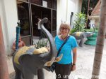 Susanne und ein Elefant