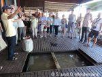 Die Fischzucht unter dem Hausboot
